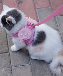 iPet-Adorable-Comfort-Cat-Dog-Kitty-Puppy-Safety-Walking-Vest-Harness-Matching-Lead-Leash-Angel-Wings-Costume-Lace-Peals-Design-0