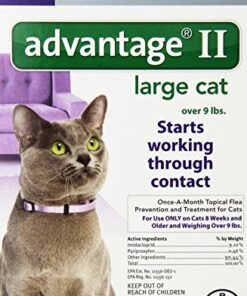 Bayer Advantage II for Large Cats Over 9 lbs, 6 Pack 1