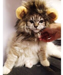 Pet Costume Lion Mane Wig for Dog Cat Halloween Dress up with Ears with Gift 7