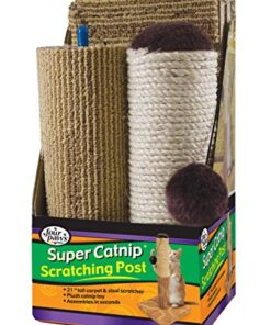 """Four Paws Super Catnip Cat Scratching Post, 21"""" Tall Sisal and Carpet Scratching Post 2"""