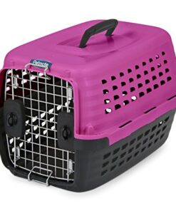 Petmate Compass Fashion Kennel Cat and Dog Kennel 4 Vibrant Colors 2 Sizes 9