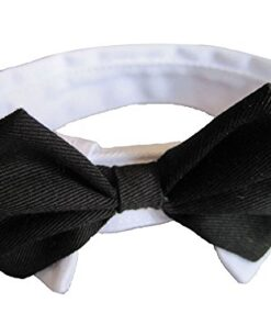Platinum Pets Formal Pet Bow Tie and Collar, 9 to 10-Inch, White 10