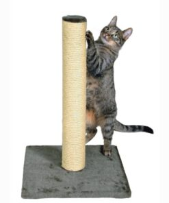TRIXIE Pet Products Parla Scratching Post, Gray 10