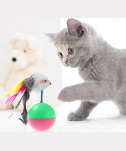Plastic Toys Balls for Cats 12