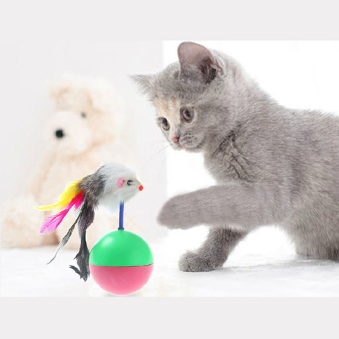 Plastic Toys Balls for Cats 1
