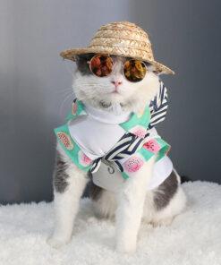 Cat's Round Sunglasses 10