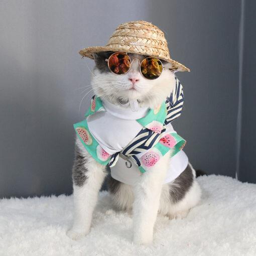 Cat's Round Sunglasses 1