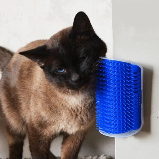 Cat's Massage Brush 1